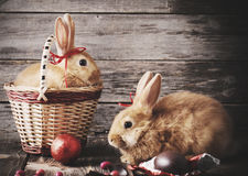 Rabbits with chocolate eggs. On wooden background Royalty Free Stock Photos
