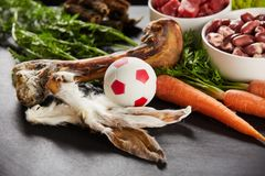 Rabbits ears, fresh bone and ball for a dog. Arranged on a table with fresh vegetables and meat for a healthy diet stock images