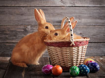 Rabbits with Easter eggs. On wooden background Royalty Free Stock Photos