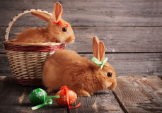 Rabbits with Easter eggs Stock Photo