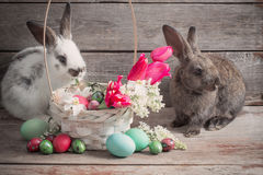 Rabbits with Easter eggs Stock Photography