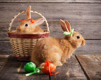 Rabbits with Easter eggs on wooden background Stock Photos