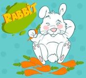 Rabbits eat carrots Royalty Free Stock Photo