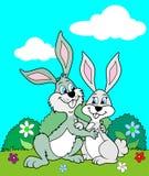 Rabbits in love Stock Photo