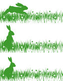 Rabbits on a meadow. Rabbits on a green meadow Royalty Free Stock Photos