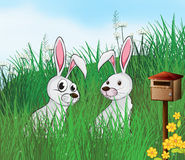 Rabbits near the mailbox Stock Photos