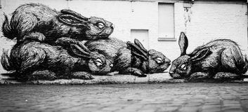 Rabbits. Picture of rabbits on the wall in Ghent, Belgium royalty free stock photography