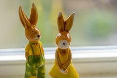 Rabbits sitting on a bench near a window Stock Images
