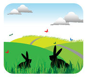 Rabbits standing in grass stock photos