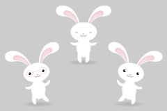 Rabbits. Vector. 3 Rabbits In Different Poses, Isolated On White Background, Vector Illustration Royalty Free Stock Photography