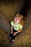 Rabieta del genio del árbol foto de archivo libre de regalías