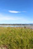 Rabit island New Zealand  Nelson area Royalty Free Stock Photo