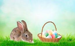 Rabit met eieren in de deken op het gebied voor Pasen royalty-vrije illustratie