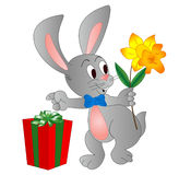 Rabit with present. A rabit holding a flower is making a present Stock Photos