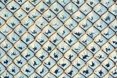 Rabitsa i det frostade rastret för rimfrost Royaltyfri Bild