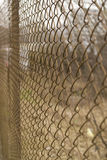 Rabitz net fence. Close detail Royalty Free Stock Images