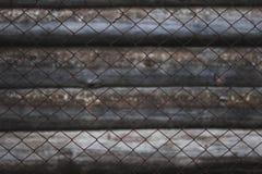 Rabitz sur le fond de vieux rondins couverts de moule Images libres de droits