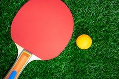 Racchetta di ping-pong con le palle arancio, pagaie di ping-pong su greensward immagine stock libera da diritti