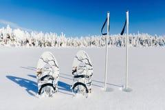 Racchette da neve bianche con i pali di trekking nella neve sulla foresta di inverno e sui precedenti nevosi Snowshoeing in Finla fotografia stock libera da diritti