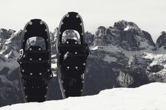 Racchette da neve nere di divertimento in neve al picco di montagna, giorno di inverno soleggiato piacevole Fotografia Stock