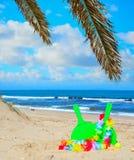 Racchette nell'ambito dei rami della palma Fotografie Stock