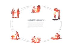 Raccogliendo la gente - la gente che seleziona frutti e carote, erba legante, portante e trasportante l'insieme di concetto di ve illustrazione vettoriale