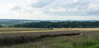 Raccogliendo sui campi nella periferia della cittadina di Neustadt Immagini Stock