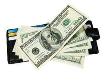 Raccoglitore con i dollari Immagini Stock Libere da Diritti