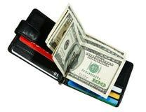 Raccoglitore con i dollari Fotografie Stock Libere da Diritti
