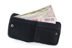 Raccoglitore con la libbra del dollaro e le euro note Fotografia Stock Libera da Diritti