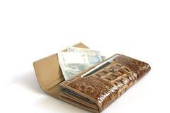 Raccoglitore di cuoio di Croco con gli isolati degli euro su bianco Fotografia Stock