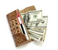 Raccoglitore di cuoio di Croco in pieno dei dollari Immagini Stock Libere da Diritti