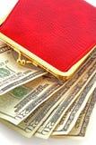 Raccoglitore e soldi Fotografia Stock