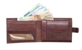 Raccoglitore e soldi Immagini Stock