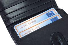 Raccoglitore per le carte di credito Fotografia Stock Libera da Diritti