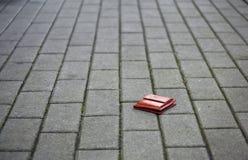 Raccoglitore perso Fotografie Stock