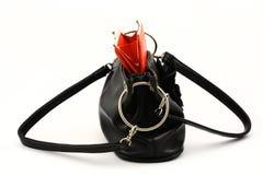 Raccoglitore rosso in sacchetto Immagine Stock Libera da Diritti