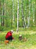 Raccoglitrice del fungo Fotografia Stock Libera da Diritti