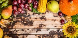 Raccolga i frutti con l'uva, la zucca ed i girasoli su un fondo di legno rustico, insegna per il sito Web fotografia stock