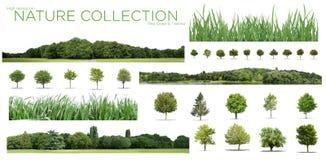 Raccolta alta stessa di definizione Treeline, dell'erba e dell'albero isolata su un fondo bianco fotografie stock libere da diritti