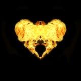 Raccolta ardente del cuore isolata su fondo nero Fotografia Stock