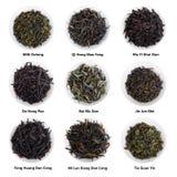 Raccolta cinese famosa del tè Varietà famose del tè della Cina Fotografia Stock