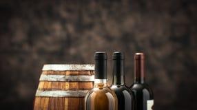Raccolta costosa del vino Immagine Stock Libera da Diritti