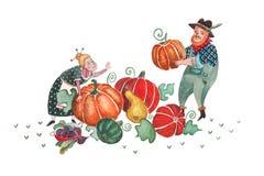Raccolta d'autunno Immagini Stock