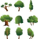 Raccolta degli alberi di estate isolati sui precedenti bianchi Immagini Stock