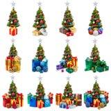 Raccolta degli alberi di Natale Fotografia Stock Libera da Diritti