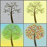 Raccolta degli alberi - quattro stagioni Fotografia Stock Libera da Diritti