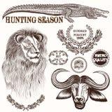 Raccolta degli animali disegnati a mano della savanna di vettore royalty illustrazione gratis