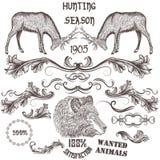 Raccolta degli animali disegnati a mano di vettore e turbinii floreali per il de illustrazione vettoriale