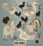 Raccolta degli animali disegnati a mano su dettagliati nello stile d'annata Immagine Stock Libera da Diritti